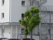 Neu-Ulm: Kommen doch Flüchtlinge in den Speicherbau?
