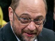 Landkreis: Kanzlerwahl: Parteien setzen auf Besuche ihrer Kandidaten