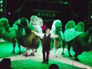Illertissen: Zirkuschef weist Kritik der Tierschützer zurück
