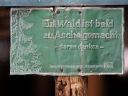 Illertissen: Hohe Waldbrandgefahr im Landkreis