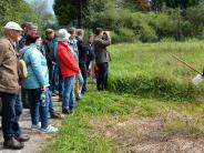 Kettershausen: Auf der Suche nach dem Sumpfgrashüpfer