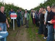 Kettershausen: Wenn's um den Mais geht