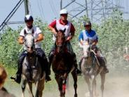 Babenhausen: Distanzritt in Babenhausen: Erstmals auch Reiter aus dem Oman zu Gast