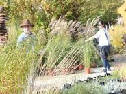 Illertissen: Gräservielfalt und rostige Raritäten