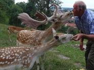 Illertissen: Er hat die Illertisser Hirsche zum Knutschen gern