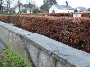 Altenstadt: Zaun oder Hecke: Was soll um den Friedhof verlaufen?