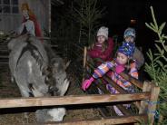 Bildergalerie: Bummeln, staunen,schlemmen:Eindrücke vomBabenhauser Weihnachtsmarkt