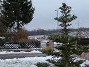 Untereichen/Thal: O Tannenbaum im Tannenweg