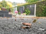 Altenstadt: Weniger Barrieren auf dem Friedhof