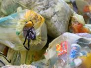Landkreis Neu-Ulm: Was passiert mit all dem Plastikmüll?