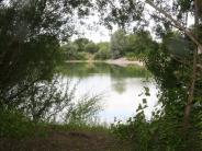 Graben: Sonnenanbeter genießen die Ruhe am Natursee