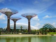 : Singapur: Naturkulisse mit stählernen Bäumen