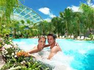 : Kurzurlaub unter echten Palmen