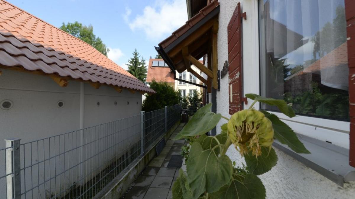 Kreis Günzburg: Hecken, laute Hunde, Grillgeruch: Worum sich ...