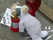 Prozess in München: Kuh nimmt Joggerin auf Hörner: Viehhändler freigesprochen