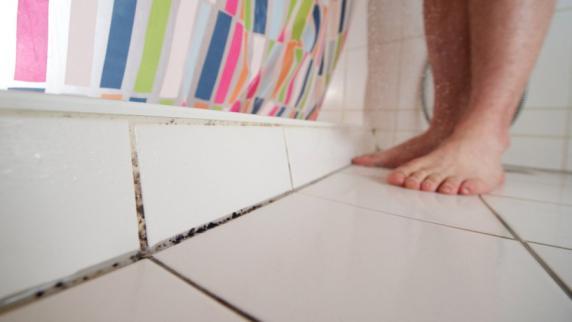 schimmel wie sie schimmel im bad entfernen und vermeiden promis kurioses tv augsburger. Black Bedroom Furniture Sets. Home Design Ideas