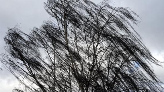 Starkregen und Orkanböen: Wetterdienst gibt Unwetterwarnung für Südbayern heraus