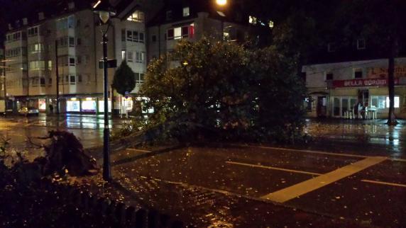 Unwetter: Umgestürzte Bäume und zahlreiche Notrufe im Großraum Augsburg