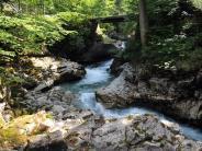 Naturschutz: Gericht erklärt umstrittenes Alpen-Wasserkraftwerk für unzulässig