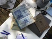 Rückblick: Alle Artikel, Bilder, Videos: Das war die Hochfeldstraße 2016