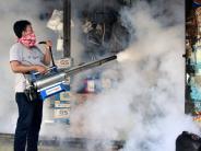 WHO-Bericht zu Zika-Virus: Zika-Virus hat sich laut WHO-Bericht schon in 33 Ländern verbreitet