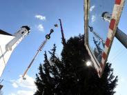 Bildergalerie: Das Aufstellen des Schlipsheimer Maibaums