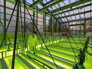 TU München: Münchner Forscher arbeiten an Algen-Treibstoff für Flugzeuge