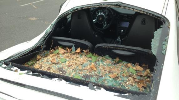 Augsburg: Pappel stürzt auf geparkten Porsche: Das sagt der Besitzer