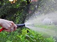 Urlaubszeit: Garten wässern: Bei Schäden haftet der Nachbar