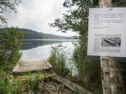 Kreis Rosenheim: Schlangen-Alarm: Suche nach Anakonda in Badesee bisher erfolglos