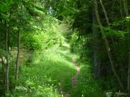 Reisebericht: Franche-Comté: Eine Reise auf den Wegen der Schmuggler