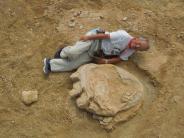 Entdeckung: Forscher entdecken Dino-Spuren in der Gobi-Wüste