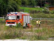 Unterfranken: Tragisches Unglück: Vater und zwei Söhne tot unter Brücke gefunden
