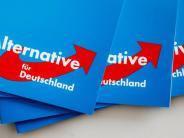 Ingolstadt: AfD-Vorstandsmitglied weist Vorwürfe von Parteimitgliedern zurück