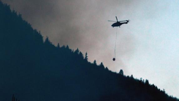 Kochel am See: Mann setzt mit Signalfeuer Wald in Brand