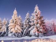 Wetter: Der Januar bleibt eiskalt