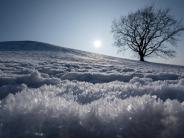 Wetter: Kältester Januar seit Jahrzehnten lässt die Region frieren