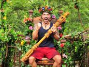 IBES 2017: Dschungelcamp 2017: Marc Terenzi ist Dschungelkönig