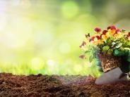 Garten im Frühling: Frühling ist Gartenzeit
