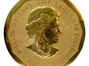 Berlin: Mehr als 50 Hinweise zu gestohlener Goldmünze - aber noch keine Täter