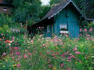 Garten: Mehr als Kraut und Rüben: Tipps für Bauerngärten