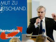 AfD: AfD-Landesvorsitzender tritt nach Streit in Schleswig-Holstein zurück