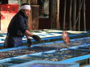 Fernreisen: Über eine Million Euro für einen Fischmarkt