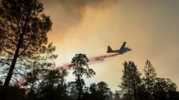 Erneut Waldbrände in Kalifornien nach Ende von fünf Jahre andauernder Dürre