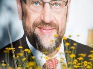 Bundestagswahl 2017: Der Wald der Wahlplakate: Was noch Politik ist und was nur Werbung