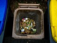 Welternährungstag 2017: Diese Lebensmittel werden am häufigsten weggeworfen