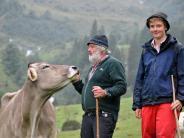 Allgäu: Auf Alphirt Adolf Scheidle wartet ein trauriger Viehscheid