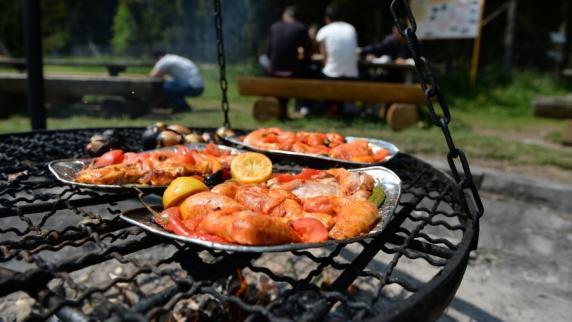 Gefährliche Keime in Puten- und Hähnchenfleisch festgestellt