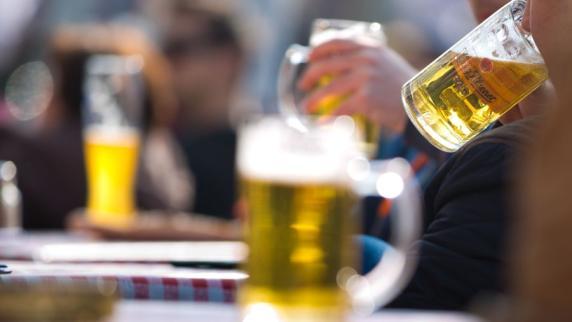 Bier-Inhaltsstoff Hordenin aktiviert Belohnungszentrum