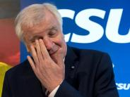 Bundestagswahl 2017: Ein Rivale sitzt Horst Seehofer im Nacken